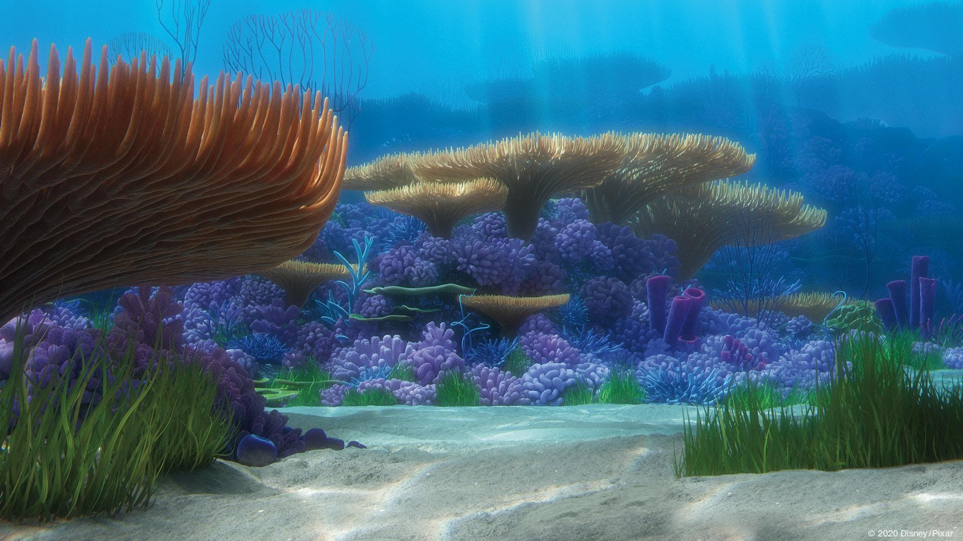 Recife de Procurando o Nemo