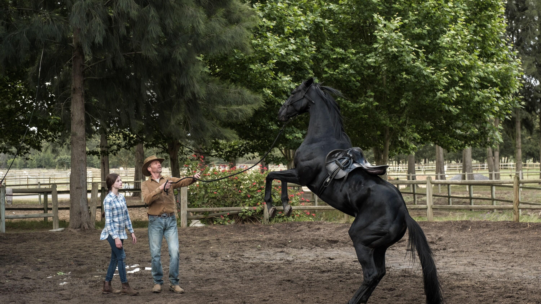BLACK BEAUTY - A wild horse and a teenage girl forge an unbreakable bond which keeps them connected for a lifetime. (Disney/Graham Bartholomew) MACKENZIE FOY, IAIN GLEN, BLACK BEAUTY