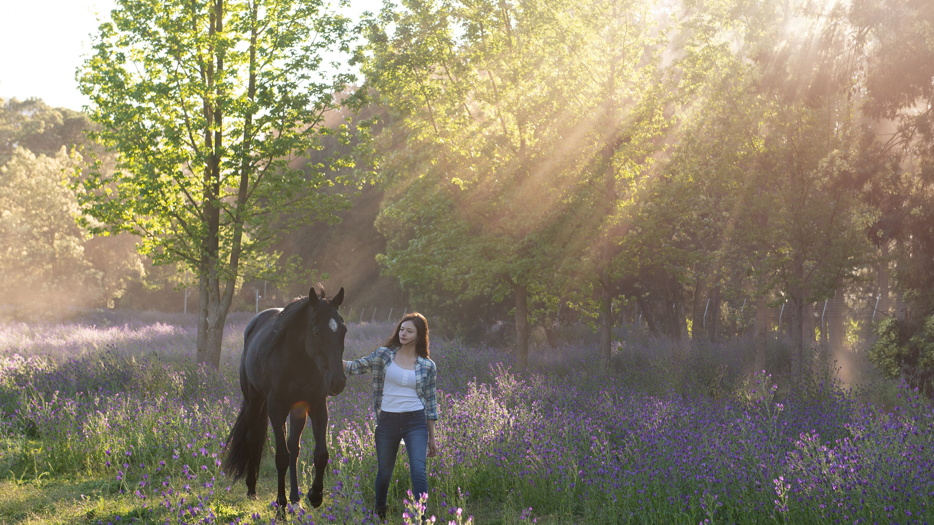 BLACK BEAUTY - A wild horse and a teenage girl forge an unbreakable bond which keeps them connected for a lifetime. (Disney/Graham Bartholomew) BLACK BEAUTY, MACKENZIE FOY