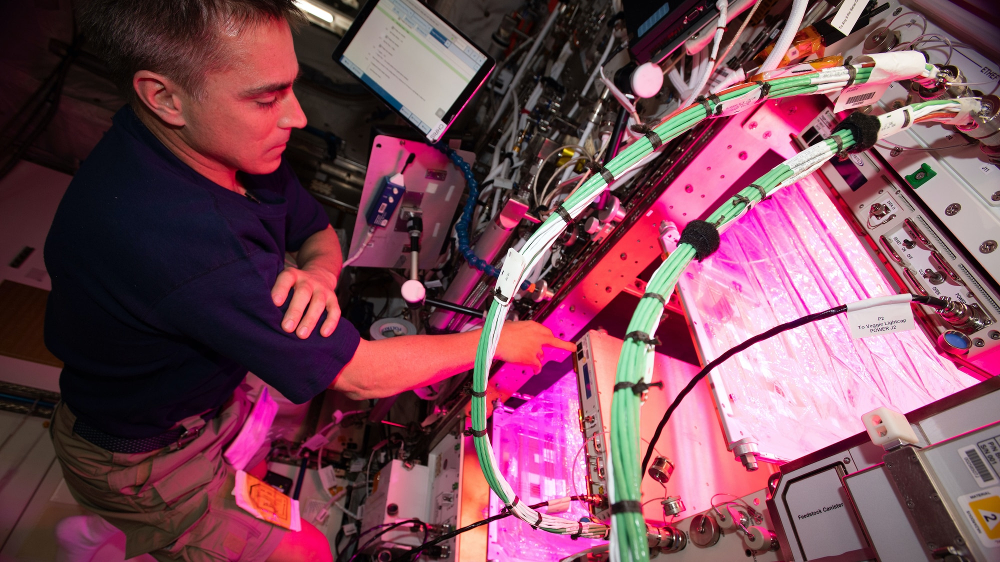 AMONG THE STARS -  (April 29, 2020) - NASA astronaut and Expedition 63 Commander Chris Cassidy cleans botany research hardware after growing lettuce and mizuna greens inside the Columbus laboratory module. The Veggie PONDS (passive orbital nutrient delivery system) research facility seeks to demonstrate growing vegetables in space to support future crews on long-term missions. (NASA) CHRIS CASSIDY