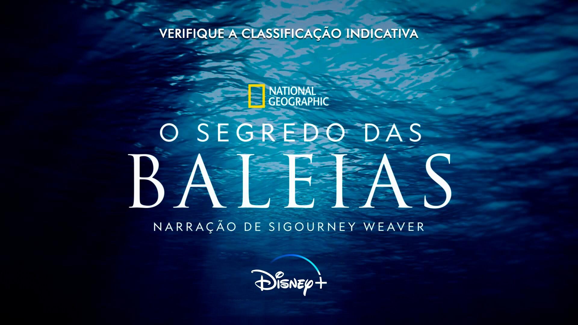 O Segredo das Baleias | Disponível no Disney+