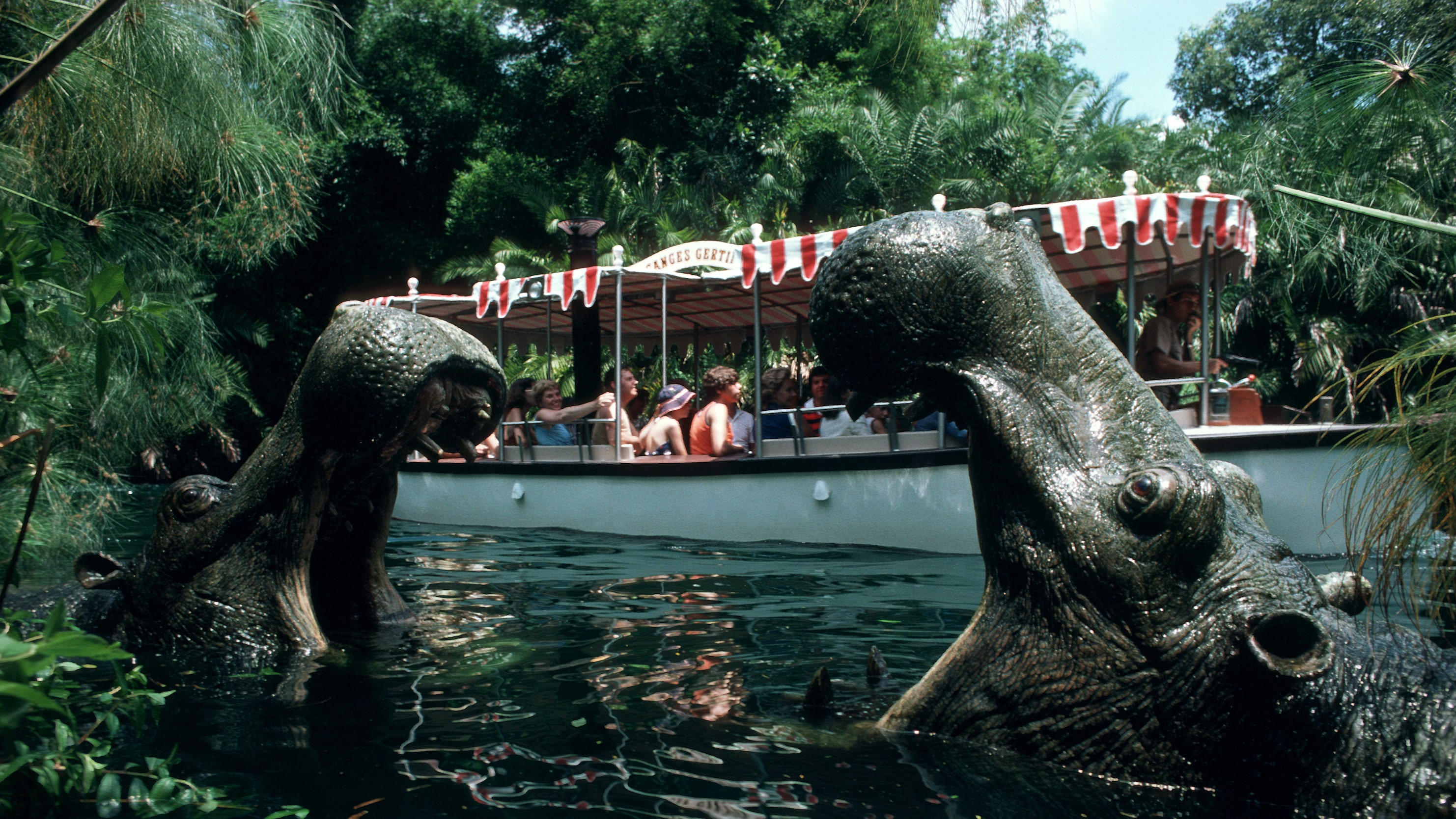 Image of two hippos and a boat from the Jungle Cruise ride.