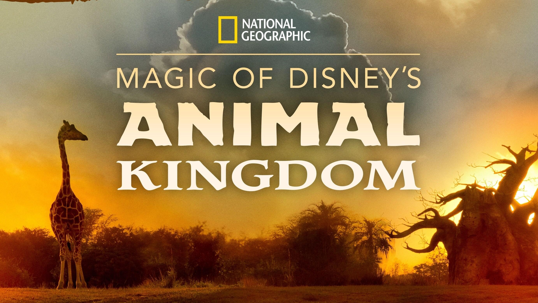 Magic of Disney's Animal Kingdom Key Art