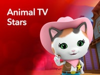 Animal TV Stars