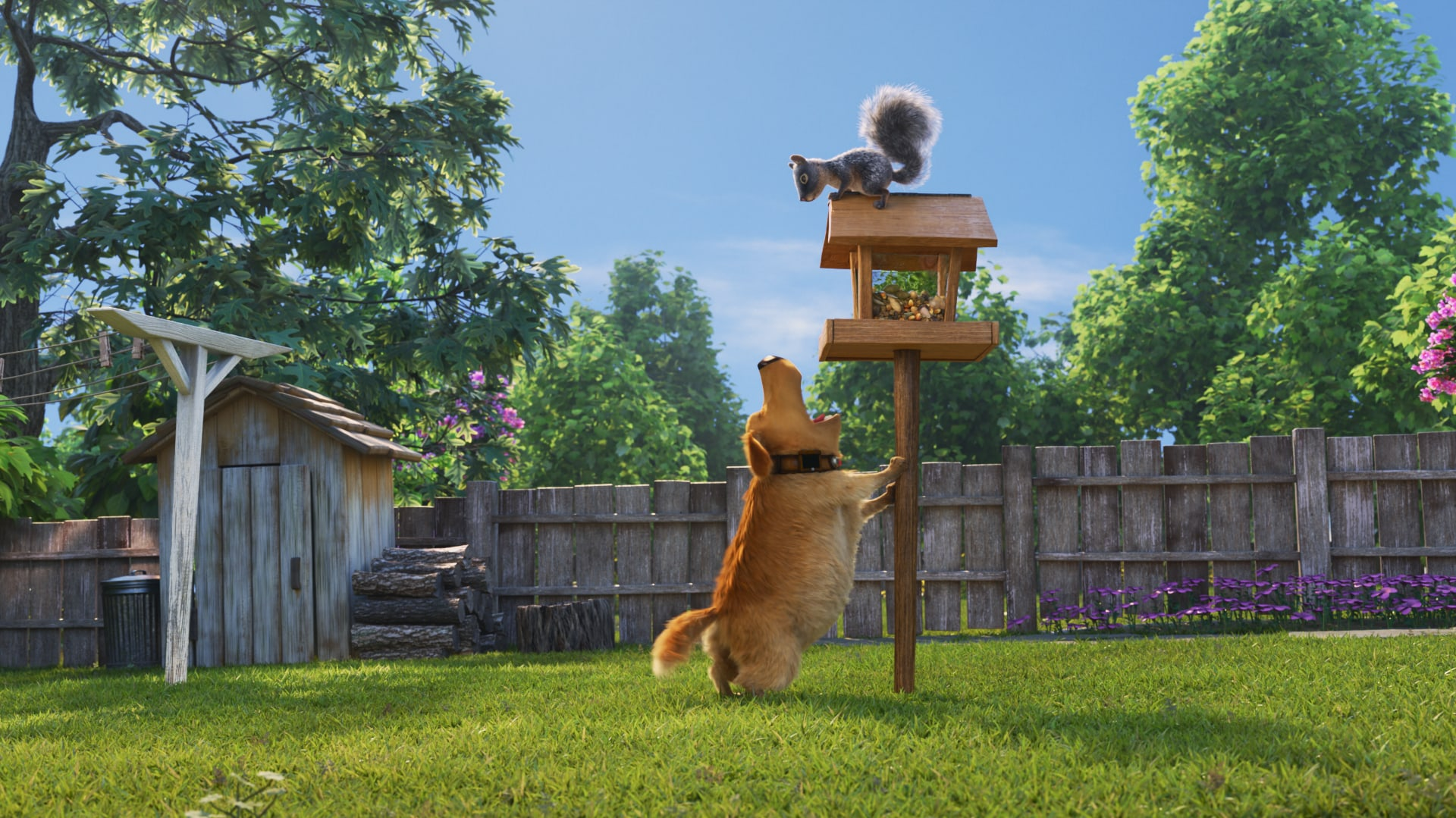 Dug chases a squirrel in Pixar's Dug Days