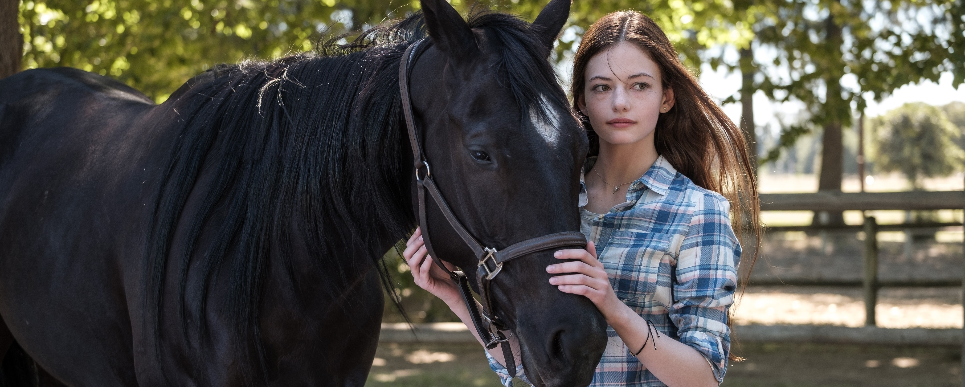 """Black Beauty"" Rides Onto Disney+"