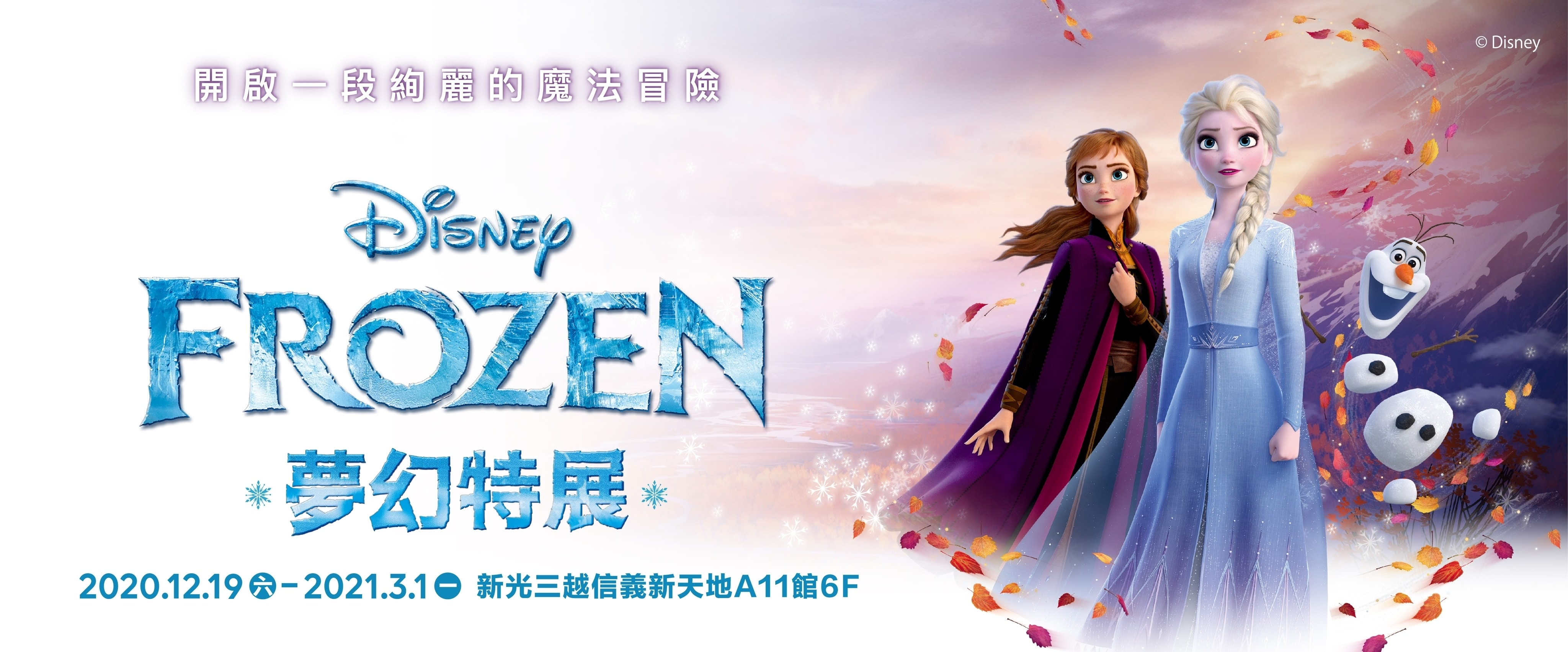 Frozen Exhibition