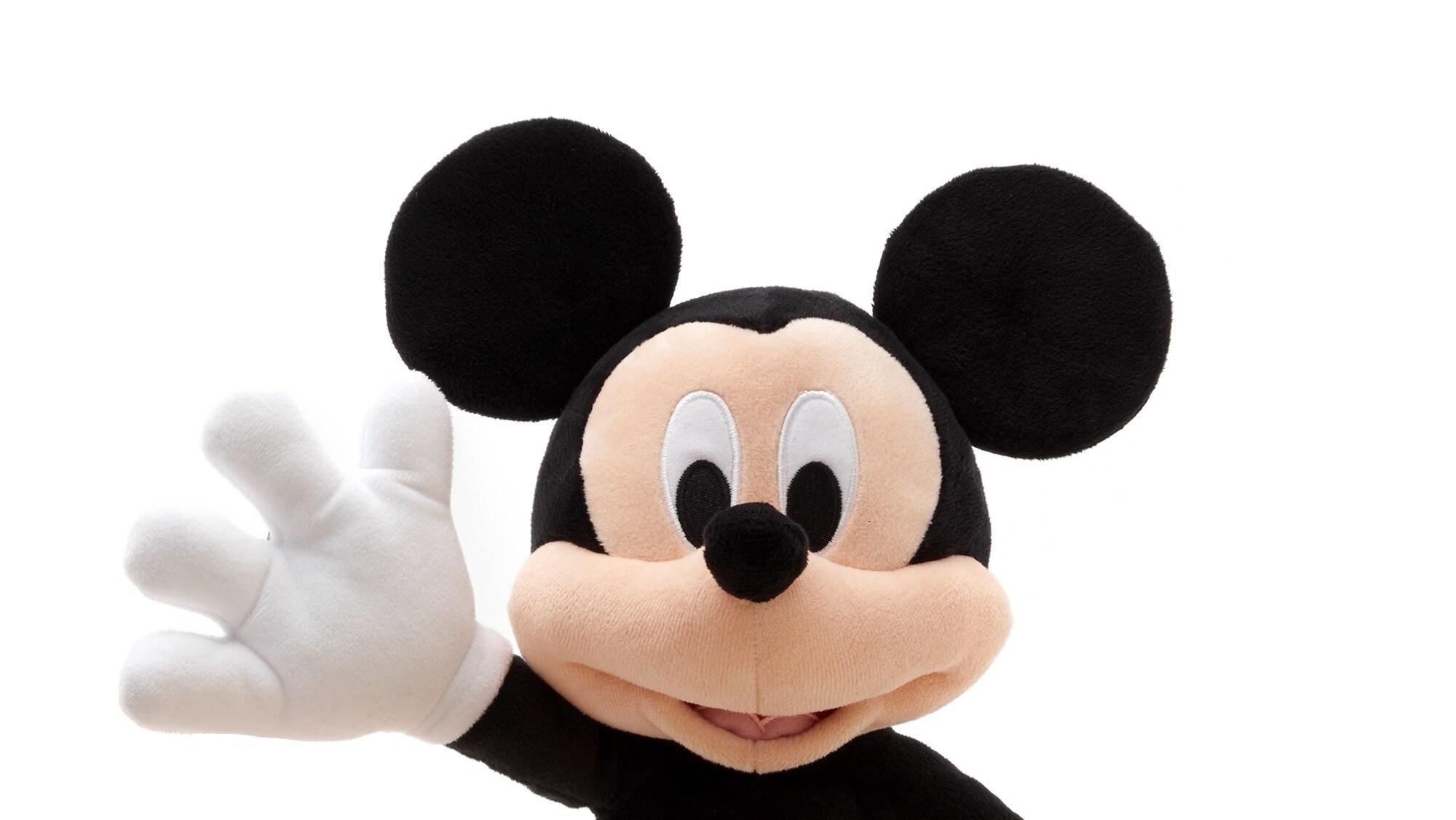 International Friendship Day - Mickey Mouse plush