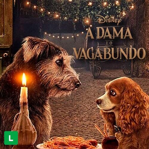 A Dama e o Vagabundo | Original Disney+ | Disney Brasil