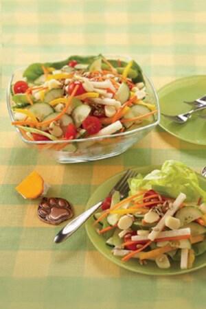 Special Agent Oso - Veggie Salad