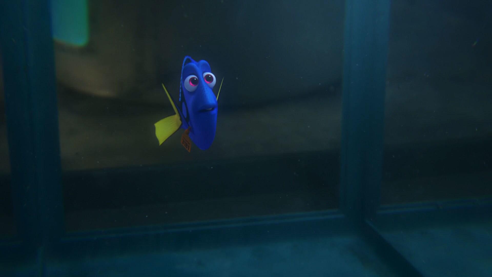 Finding Dory - Trailer