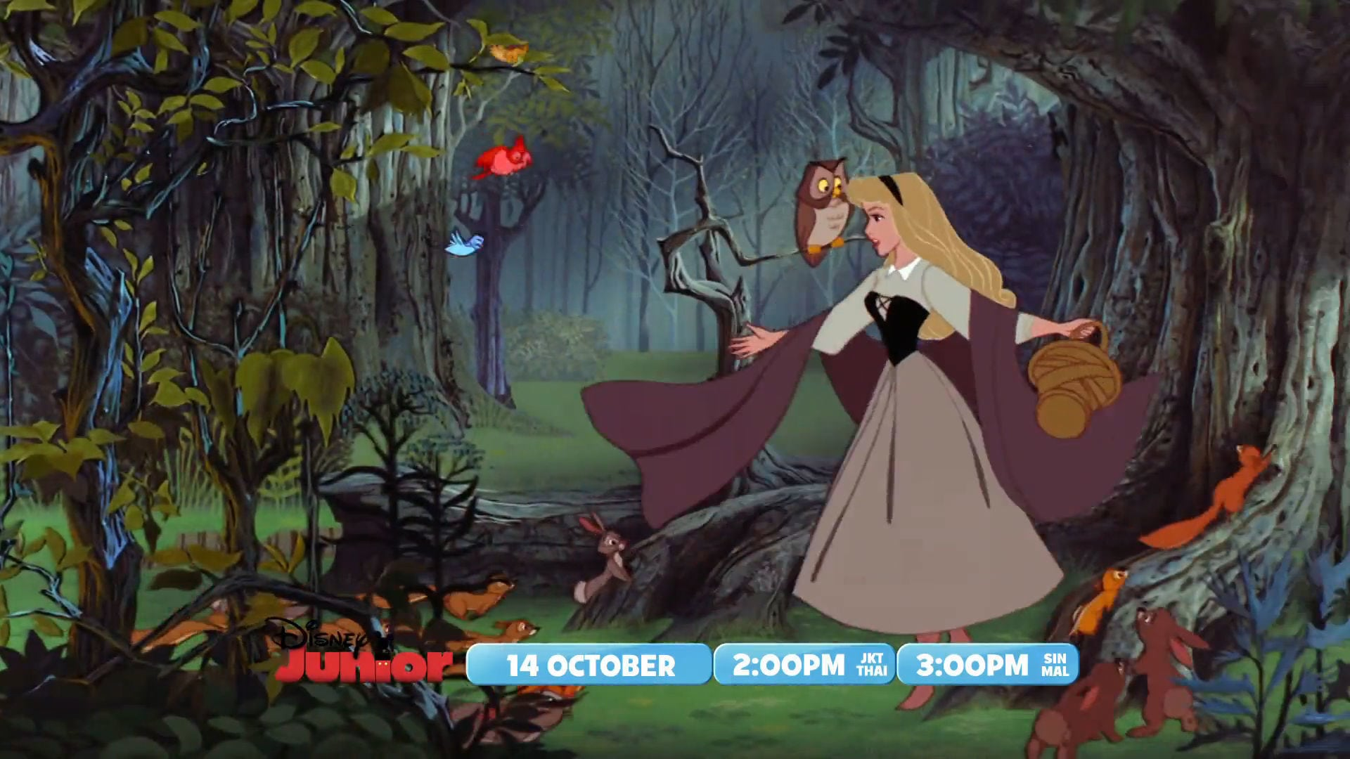The Magical World of Disney Junior – Sleeping Beauty