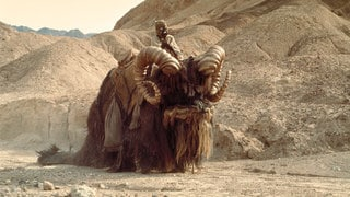 8 Star Wars Creatures We Want to Hitch a Ride On