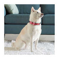 Image of Minnie Mouse Dog Collar # 2