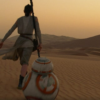 Quiz: What Star Wars Activity Should You Do This Summer Vacation?