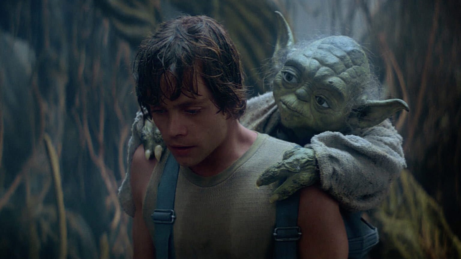 Empire at 40 | From a Certain Point of View: Was Luke Right to Leave Dagobah with His Training Incomplete?