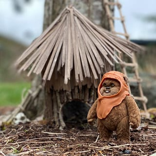"Reuse, Recycle, and Return (of the Jedi): Make an Upcycled Ewok ""Fairy"" House"
