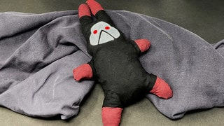 Make Your Space Cozy with a DIY Bad Batch Lula Doll