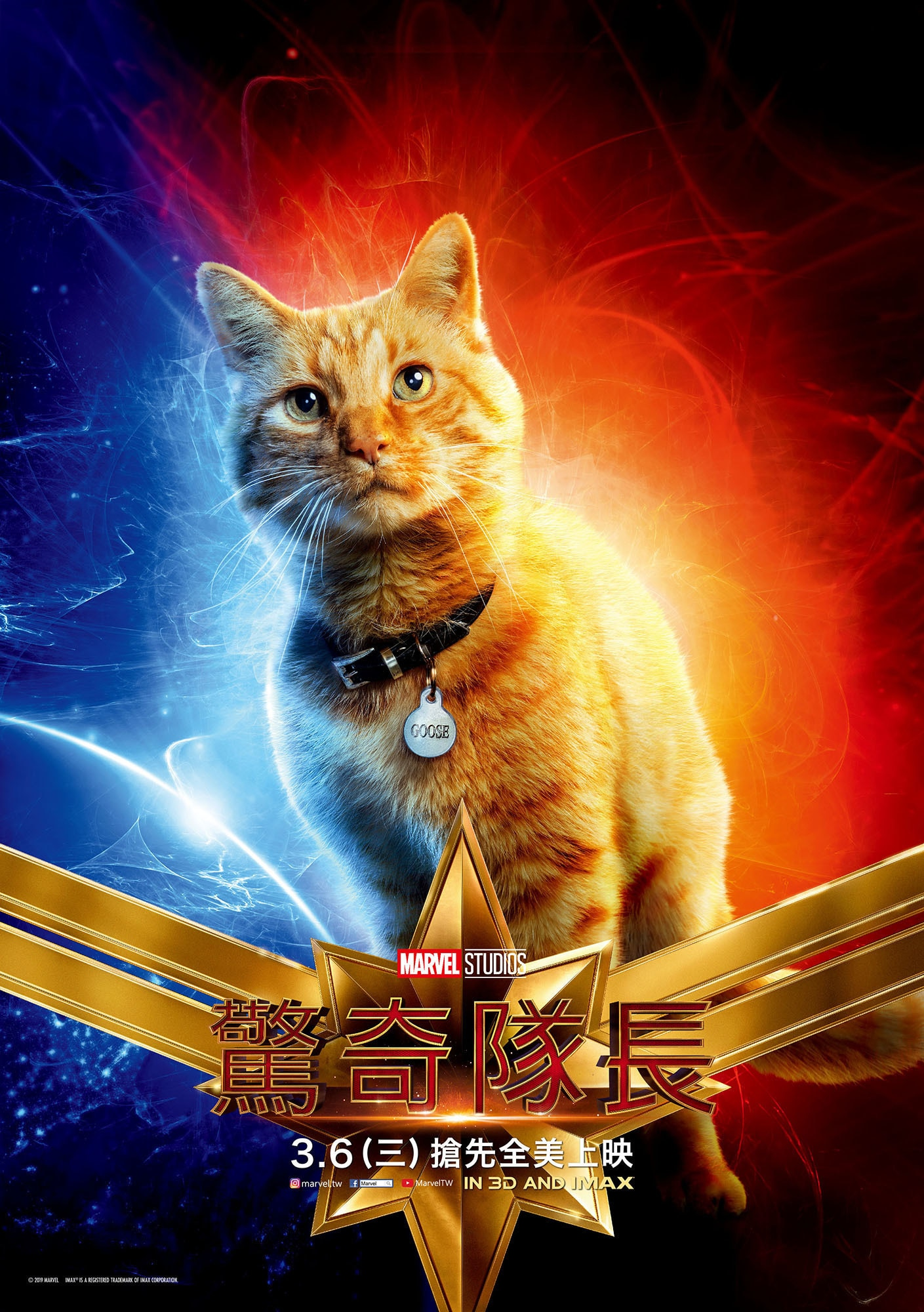 Captain Marvel - Cat Fury