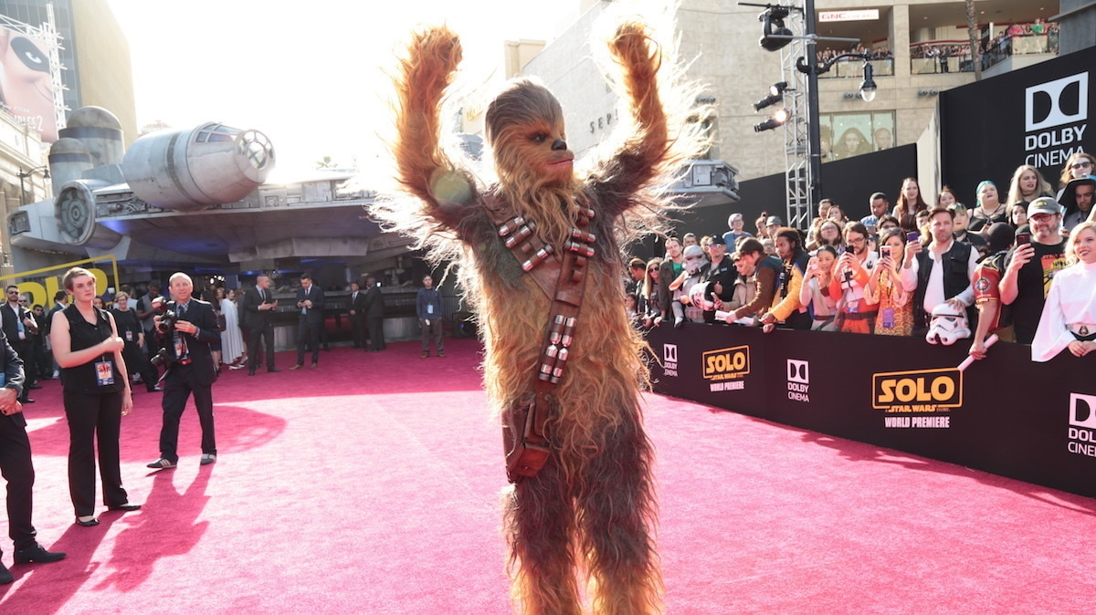 Chewbacca on the red carpet for premiere of Solo