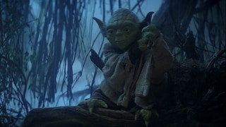 Luke Meets Yoda
