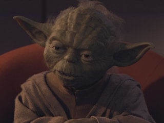"""""""Fear is the path to the dark side...fear leads to anger...anger leads to hate...hate leads to suffering."""""""