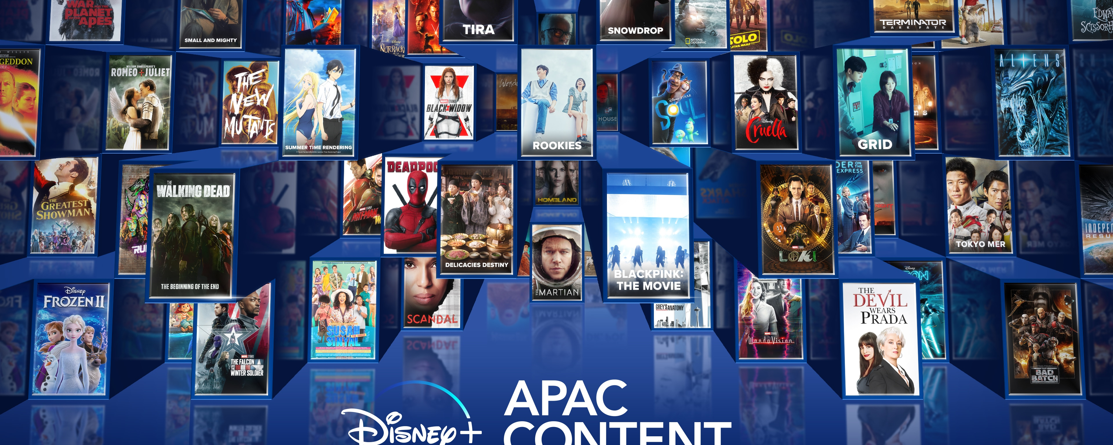 Disney+ Showcases Ambitious New Content Slate From Asia Pacific
