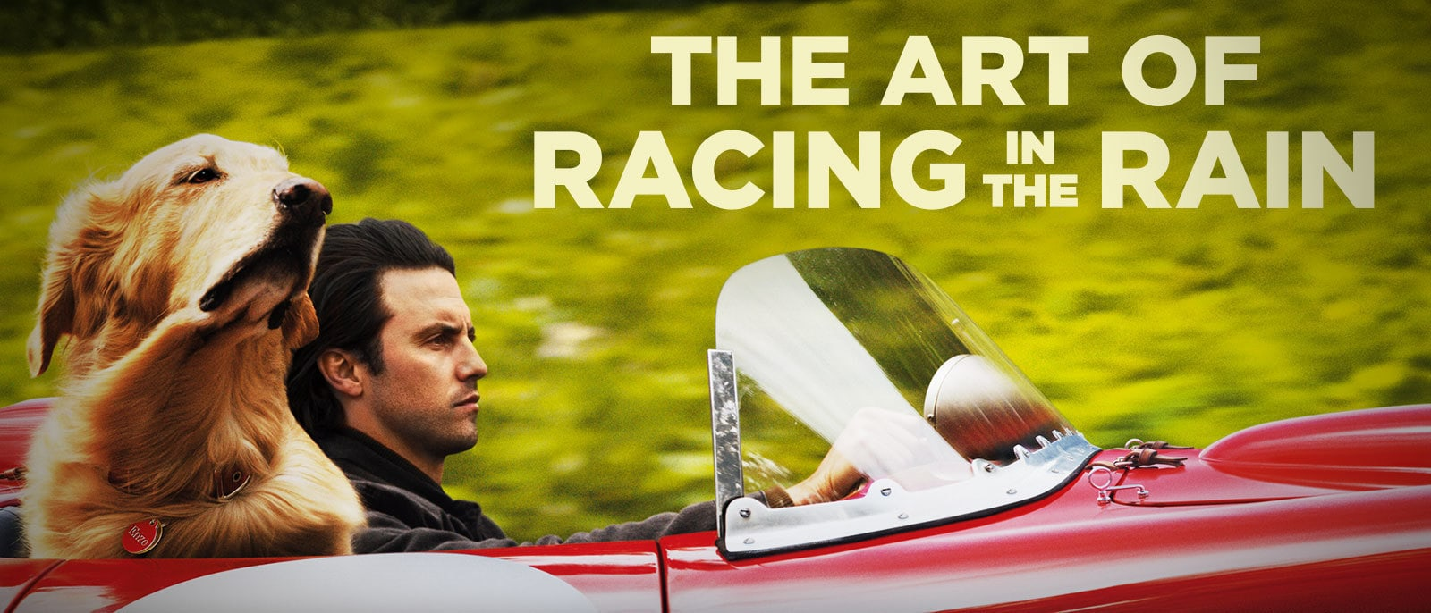 The Art of Racing in the Rain Hero