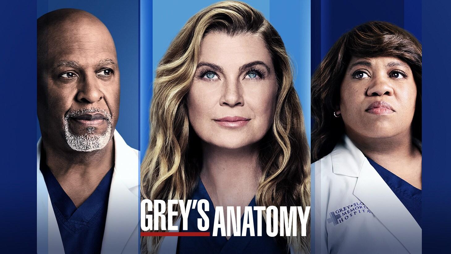 Actors James Pickens Jr., Ellen Pompeo, and Chandra Wilson from Grey's Anatomy