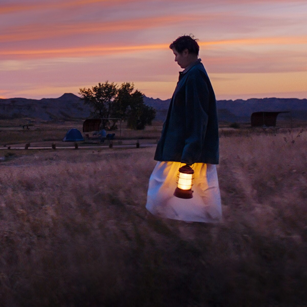 Frances McDormand in Nomadland. Stream on Star on Disney+