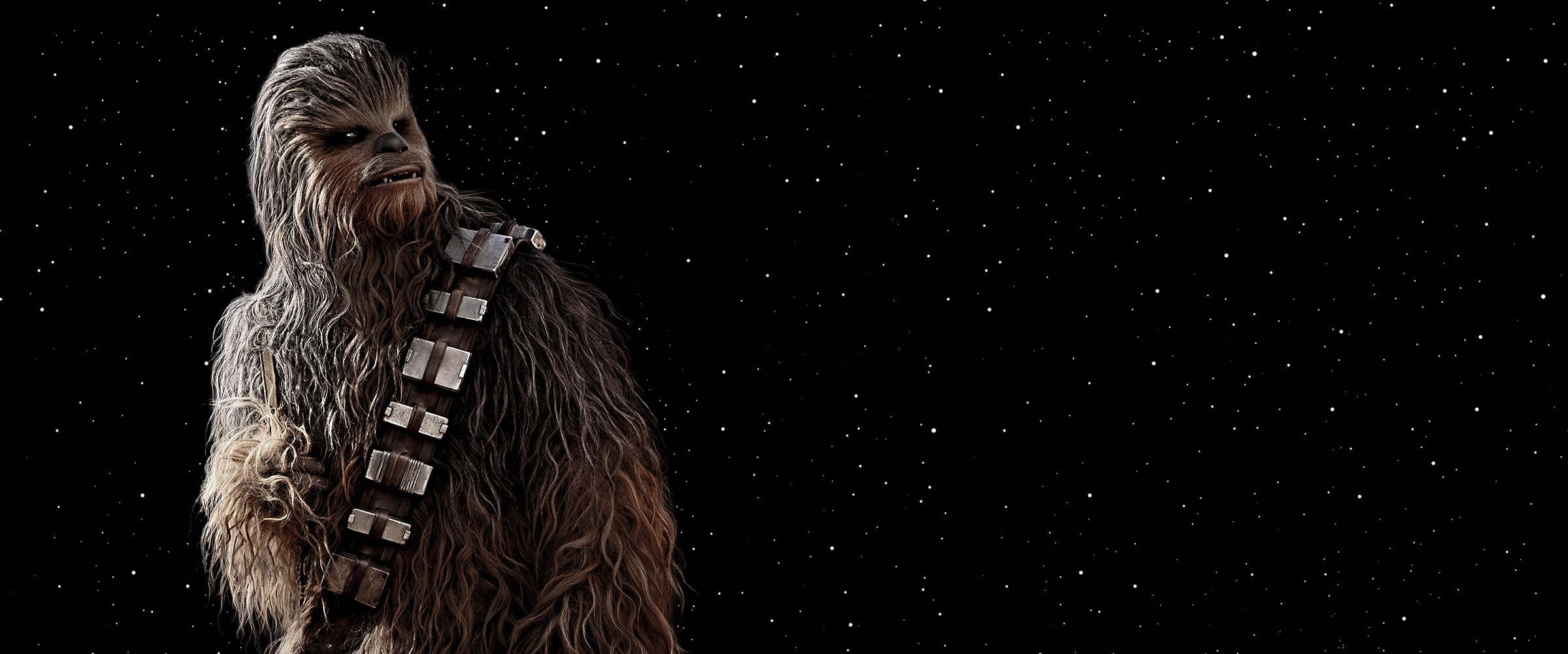 Star Wars Episode IX: The Rise of Skywalker (2019) - Homepage Hero - CHEWBACCA