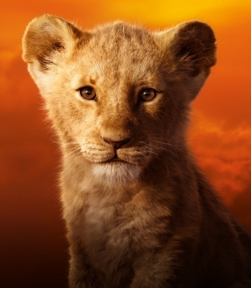 Simba as a cub in The Lion King