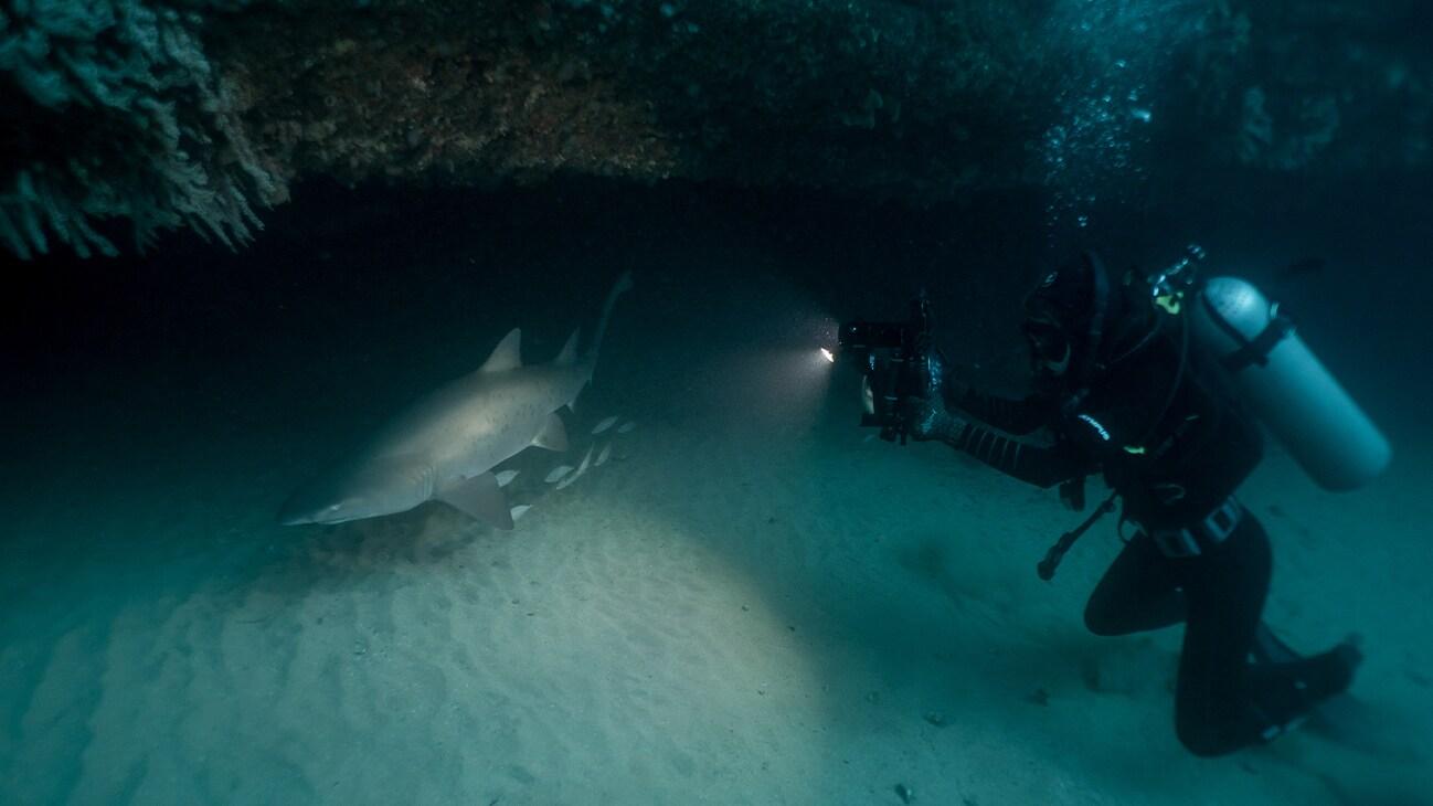 Photographer and filmmaker Michaela Skovranova at work underwater. Photo by Tim Charody