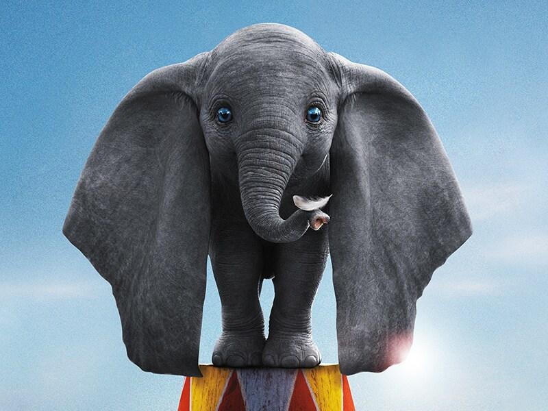 Dumbo 2019 Disney Movies Disney Australia New Zealand