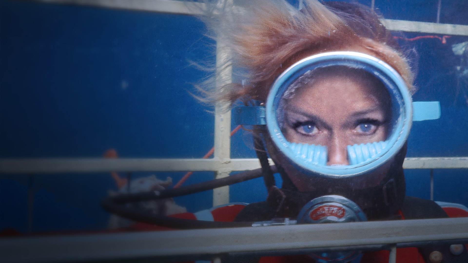 Playing with Sharks | National Geographic | Now streaming on Disney+