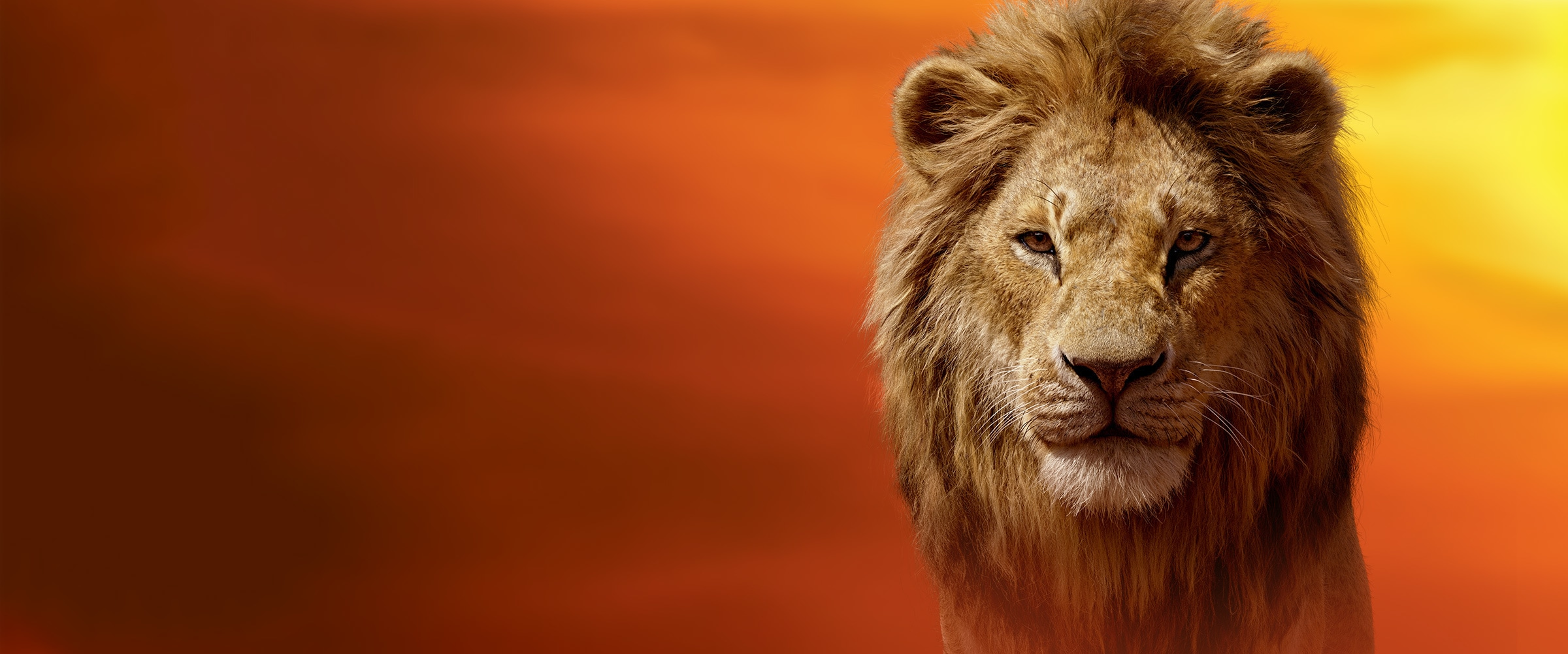 EMEA Banner - Disney's The Lion King (2019) - Protect The Pride Hero - Mufasa Red Sky