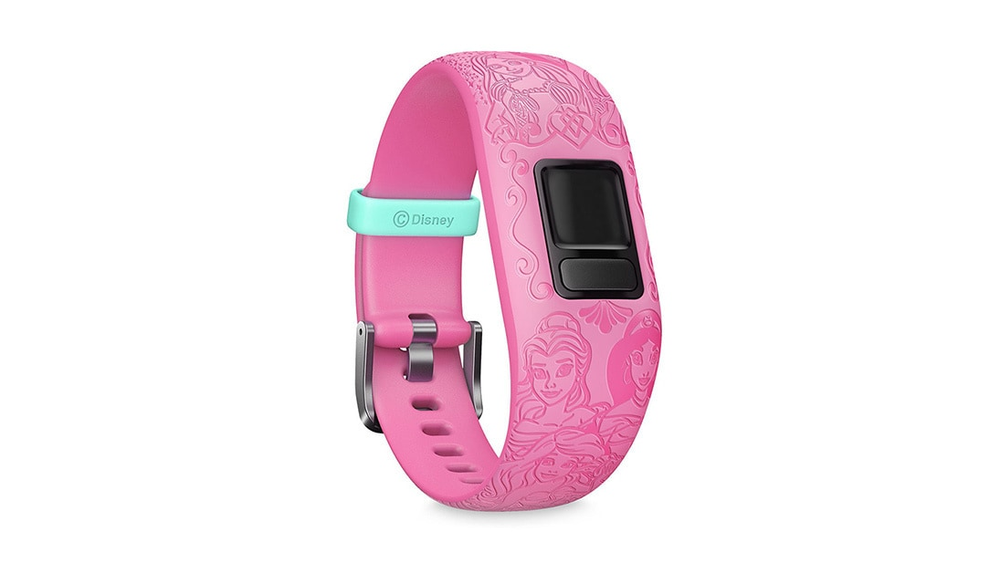 Garmin Activity Band