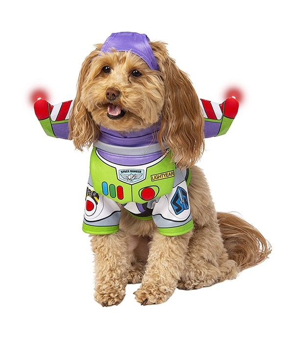 Light Up Pet Costume