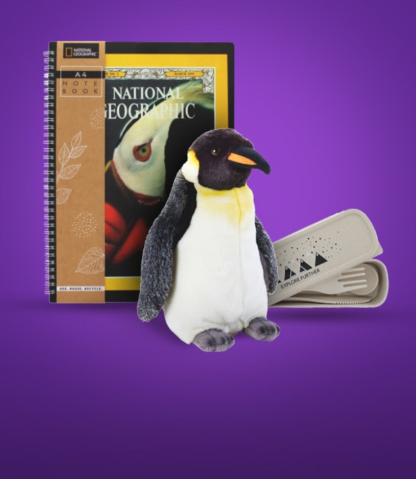 National Geographic's range of stationery, toys and clothing.