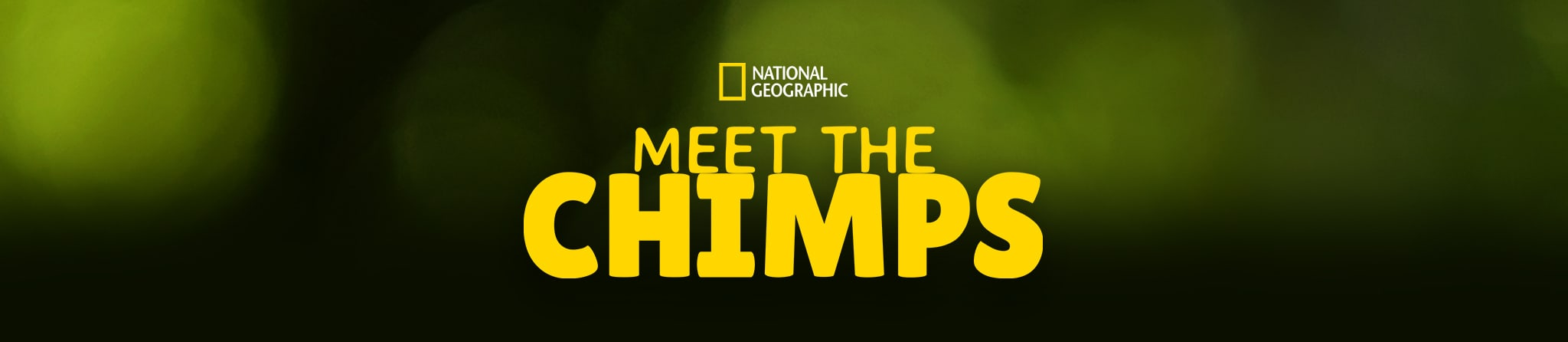 National Geographic | Meet the Chimps