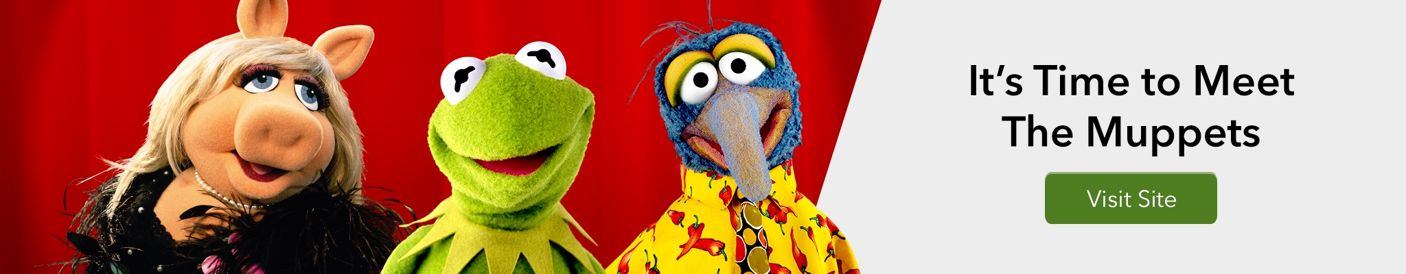 It's Time to Meet The Muppets - Visit Site