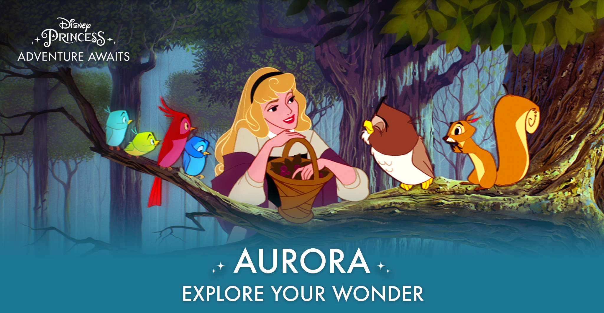 Aurora - Explore Your Wonder