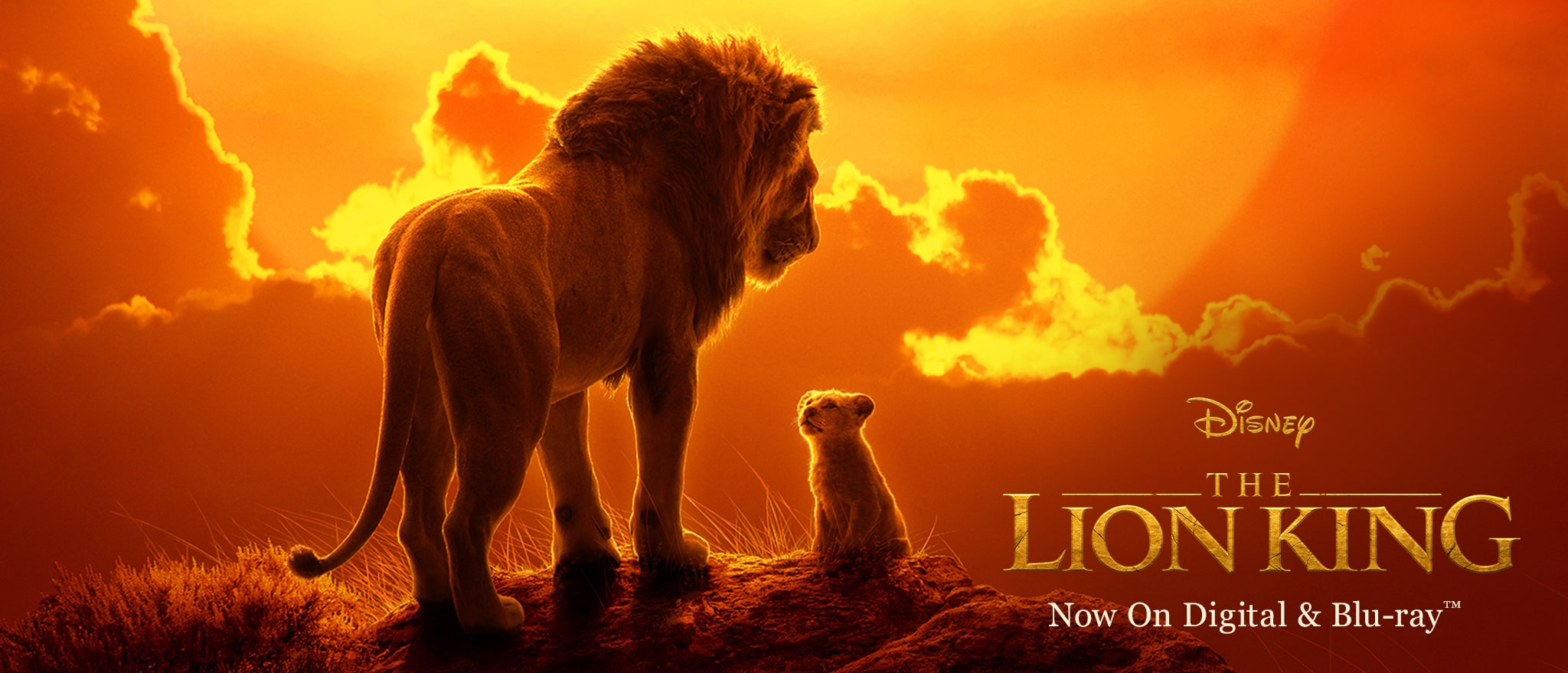 Disney - The Lion King - Now on Digital and Blu-ray.