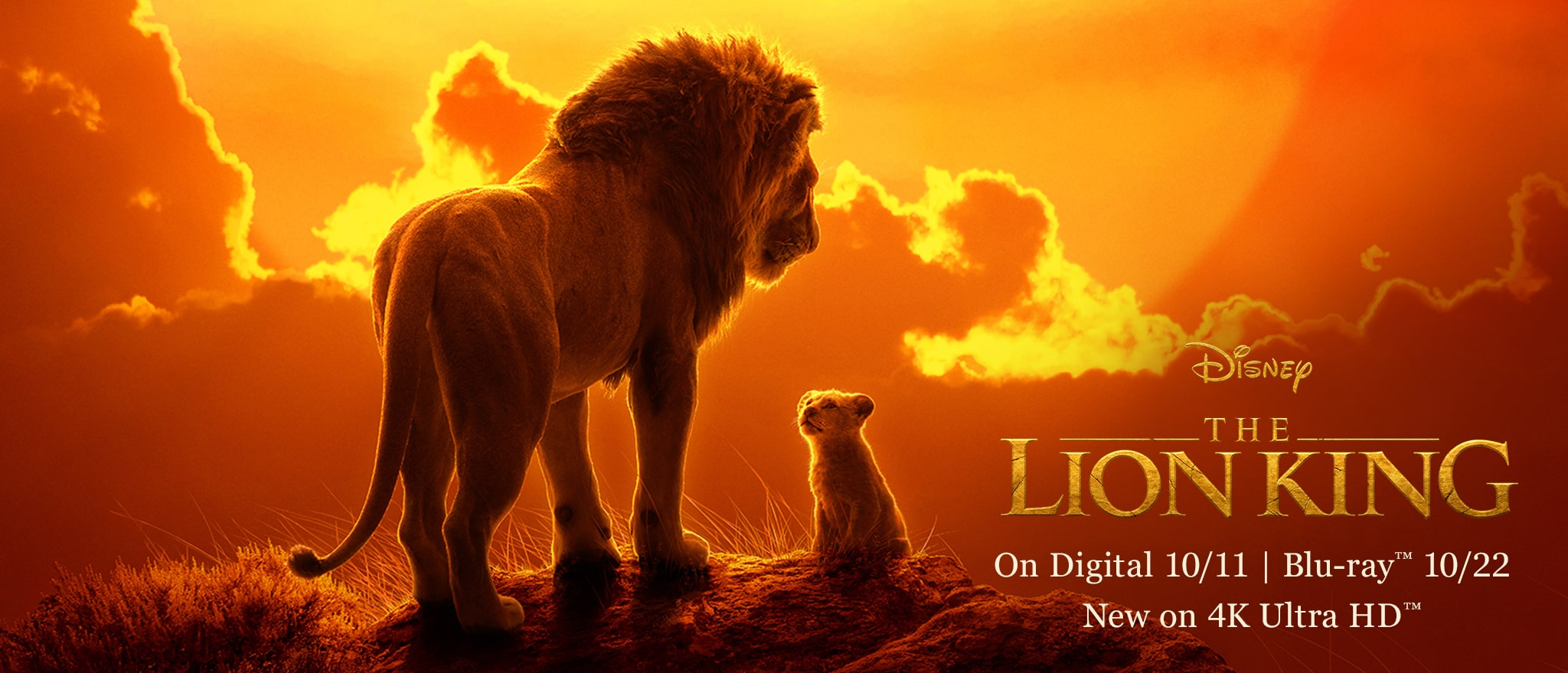 Disney - The Lion King - On digital October 11, on Blu-ray October 22. New on 4K Ultra HD.