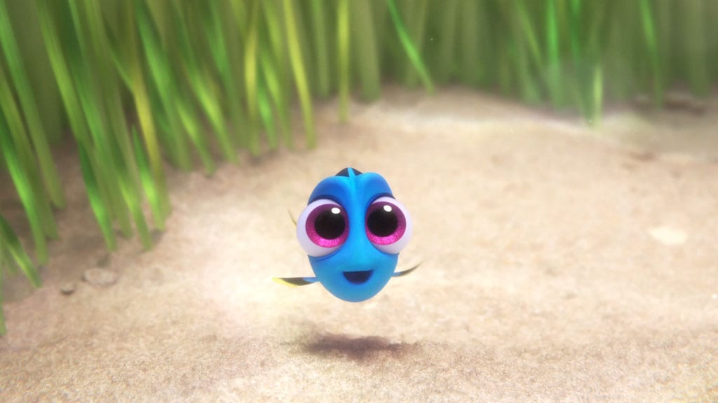 Meet Baby Dory | Finding Dory