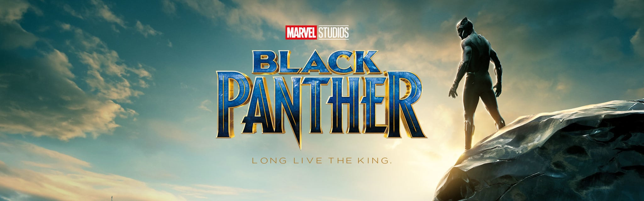The Black Panther - In Cinemas Now - ID