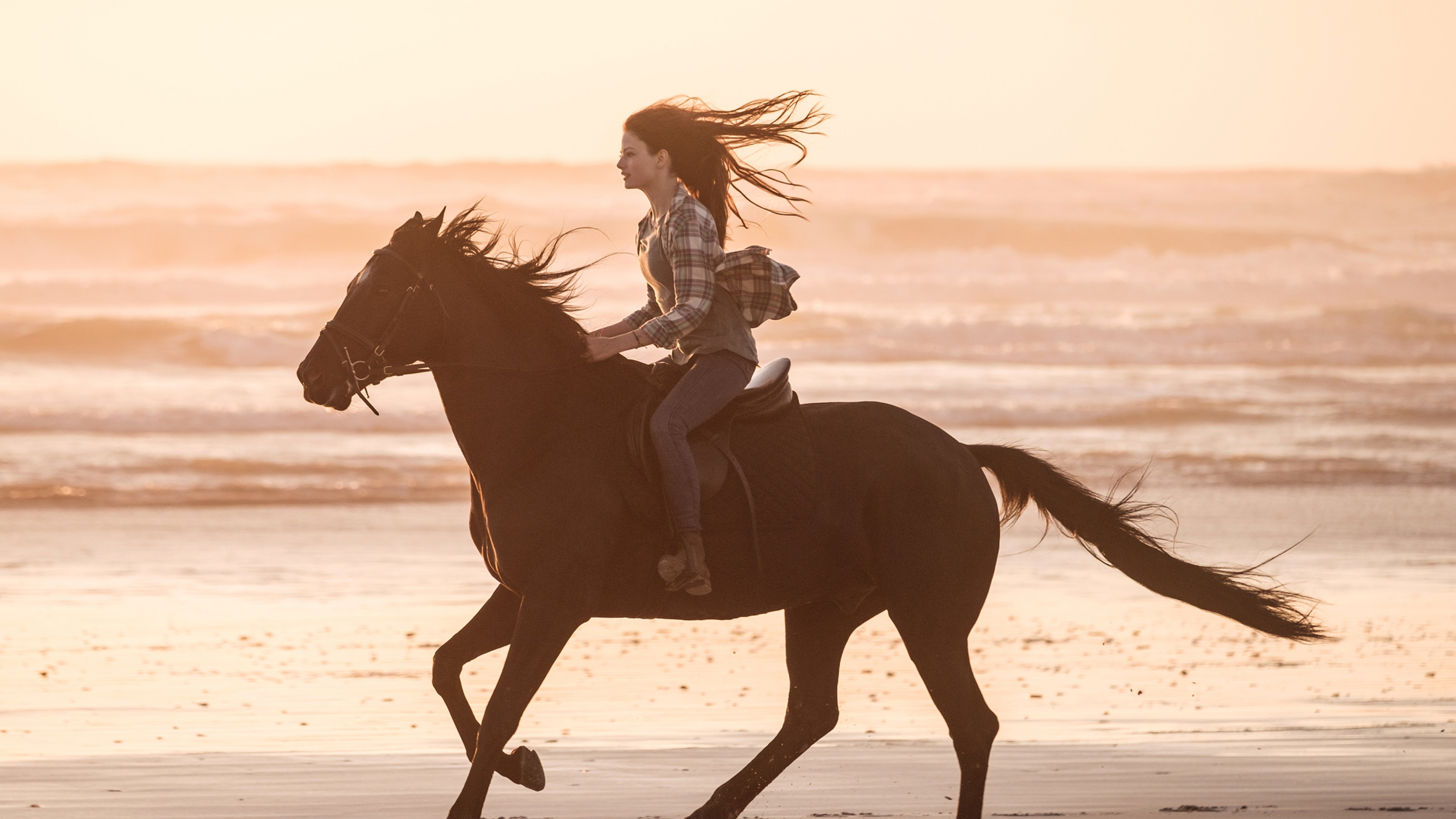 BLACK BEAUTY - A wild horse and a teenage girl forge an unbreakable bond which keeps them connected for a lifetime. (Disney/Graham Bartholomew) MACKENZIE FOY, BLACK BEAUTY