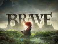 Brave collection