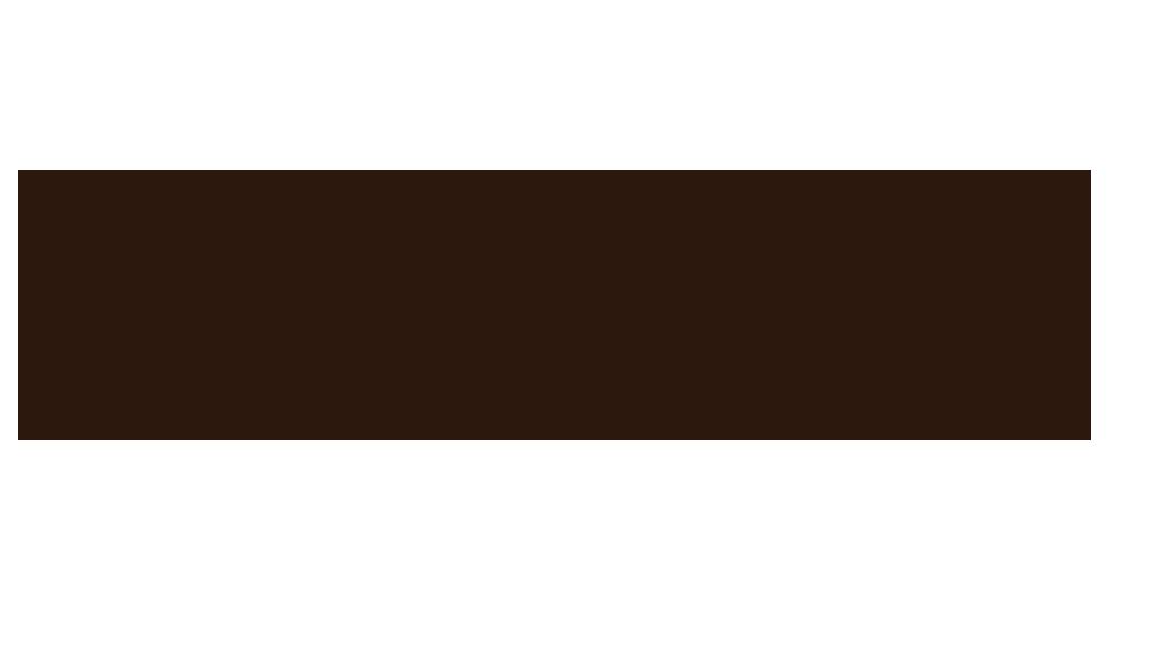Burrow Logo