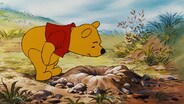 Pooh and Gopher